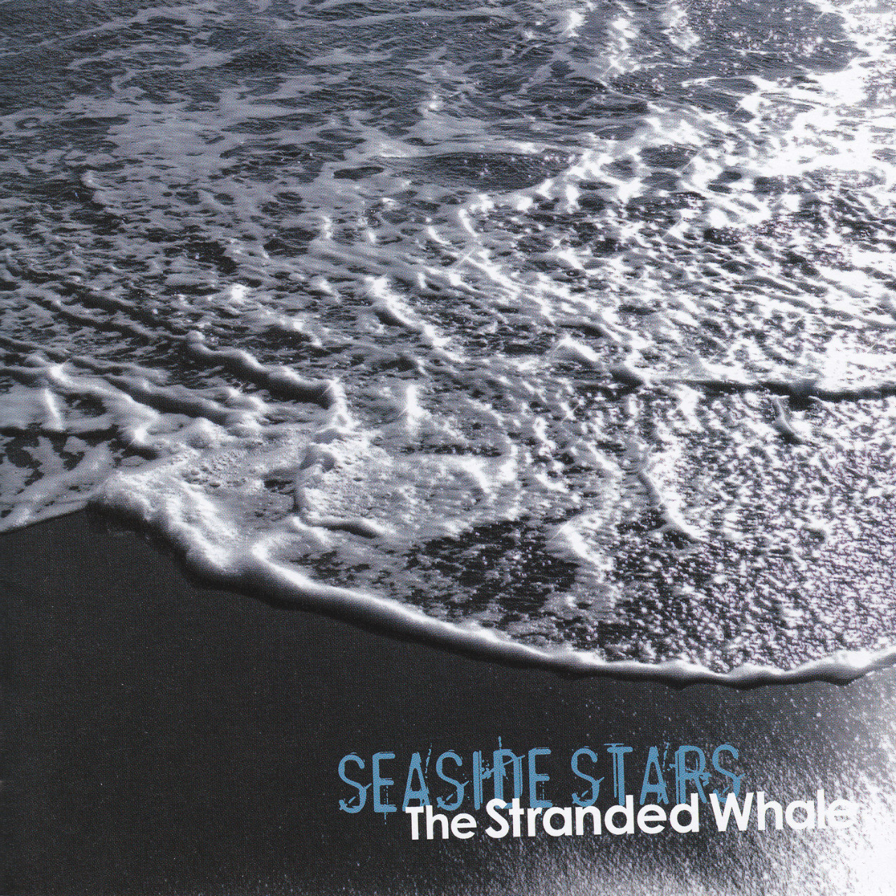 Seaside Stars - The Stranded Whale